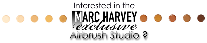 interested in the the airbrush studio